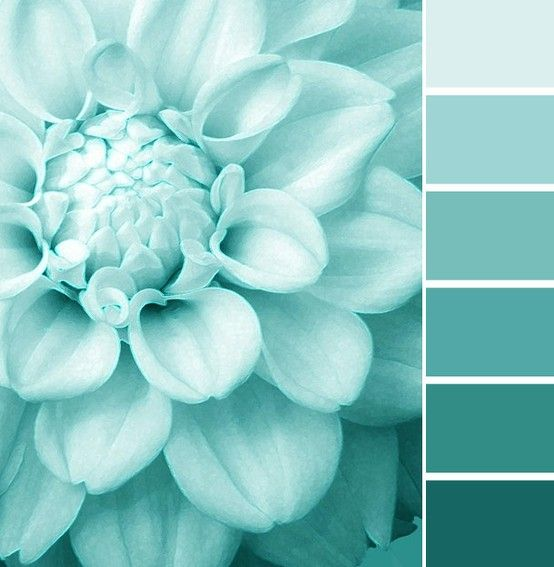 khaki-and-chrome-friday-palette-color-scheme